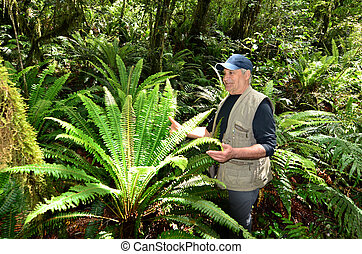 Fiordland - New Zealand - Visitor looks at a silver fern in...