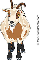 vector hilarious funny cartoon spotted goat with horns -...