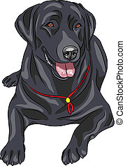 vector sketch dog breed Labrador Re - smiling black gun dog...