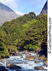 Fiordland - New Zealand - Landscape of Hollyford river in...