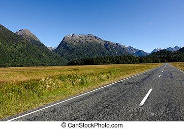 Fiordland - New Zealand - Empty road in Fiordland, New...