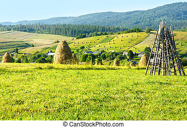 Summer mountain rural view with haystacks Carpathian,...