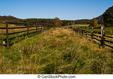 Fences - Line of fences in green grass with blue sky