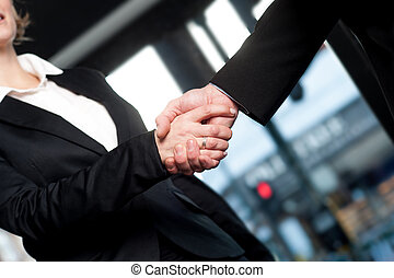 Business handshake, deal finalized - Successful business...
