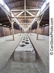 Toilets in the Auschwitz II-Birkenau - Toilets in the...