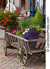 Old Wooden cart with plants in pots
