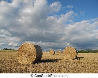 Rundballen auf einem Getreidefeld - Rundballen,...