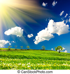 Green meadows over blue sky and sunlight