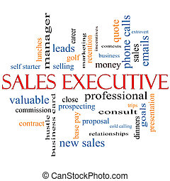 Sales Executive Word Cloud Concept with great terms such as...