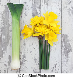 Symbols of Wales - Daffodil flower and leek vegetables over...