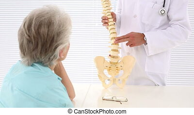 Chiropractor showing spine model to patient in an office at...