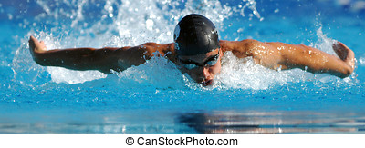 Swimming - Sport - Swimmer swimming during a competition