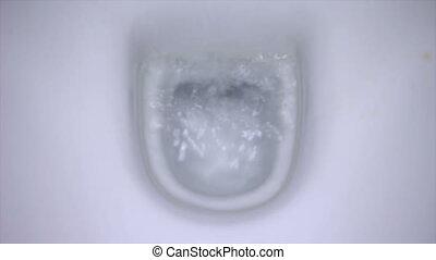 Flushing Toilet 2