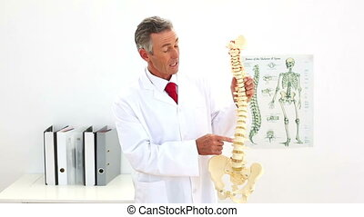 Doctor pointing to skeleton model