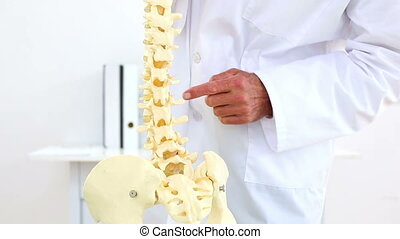 Doctor explaining skeleton spine model