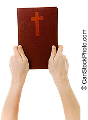 on a white background hands holding a bible - on a white...