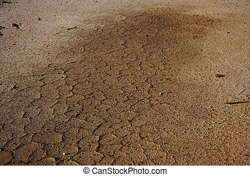 Dried and cracking earth