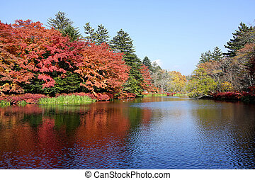 Autumn colour of pond, Karuizawa, Nagano, Japan