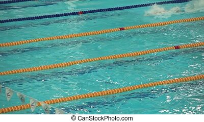 finish sports swimming - competitive swimming swim races...