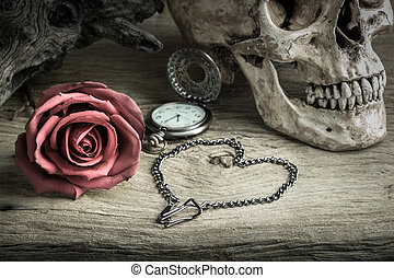 Still life pocket watch - Still life with human skull with...