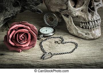 Still life pocket watch - Still life with human skull with...