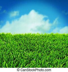 grass and the sky - closeup of grass over the blue sky with...