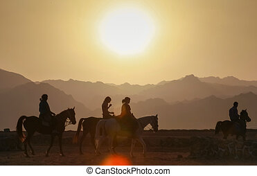 Tourists riding horses - DAHAB, EGYPT - JANUARY 29, 2011:...