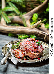 Closeup on freshly baked venison on a plate