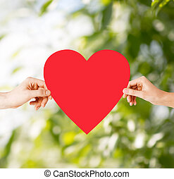 couple hands holding red heart - health, love and...