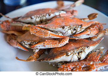 close-up, cozinhado, azul, caranguejos