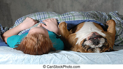 dog in bed - english bulldog laying in bed with preteen girl...