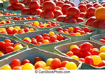 Variety of Tomatoes at Outside Farmer's Market