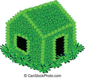 House with green flowers