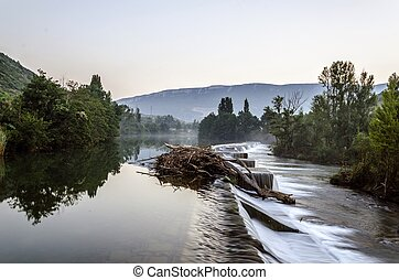 Fallen tree - Falen tree inside the river in Spain.