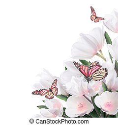 White tulips with green grass and butterfly. Floral...