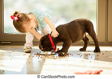 Cute little girl feeding her puppy - Beautiful little girl...