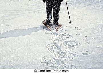 A winter walk in the snow - interesting snowshoe tracks left...