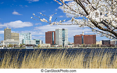 Cambridge, Massachusetts skyline in the spring.