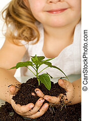 Little girl holding a young plant in soil - closeup - Little...