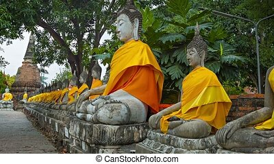 Row of Buddha statues in orange clothes - Video 1080p - Row...