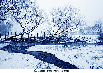 withered tree landscape in the snow, North China - withered...