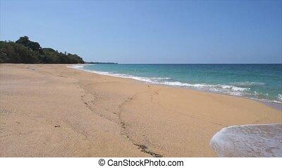 caribbean beach - natural caribbean beach