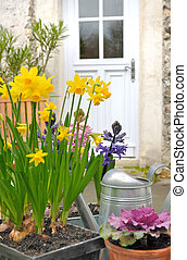 spring flowers at the front door of the home