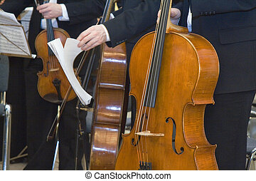 the concert of the classical music - Musicians at the...