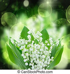 lilly of the valley flowers close up