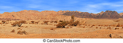 Red mountains in Timna park. - Panorama of famous red...