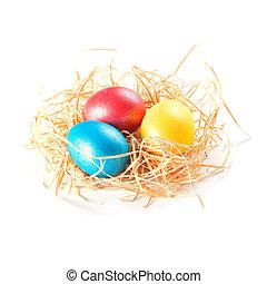 easter eggs in nest on white background