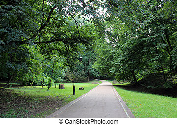 path in great park with green grass