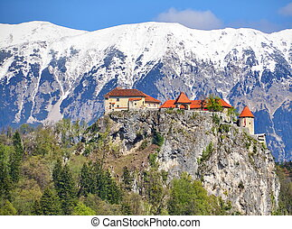 Bled Castle - Bled castle, Slovenia with snow-capped...