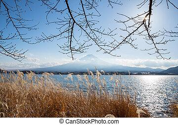 fujisan from kawaguchigo lake - Mountain Fuji fujisan from...